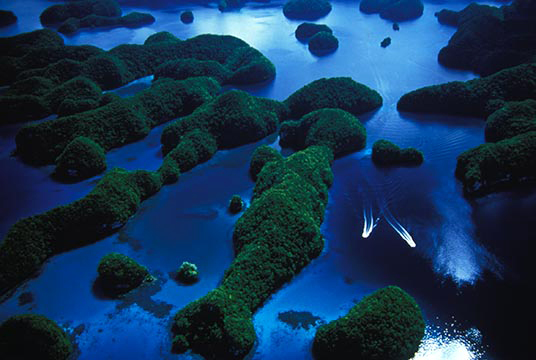Palau, Micronesia