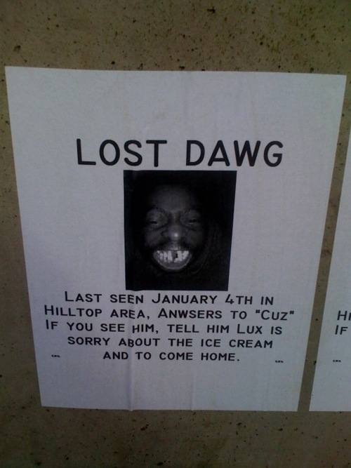 Photo of lost dawg sign