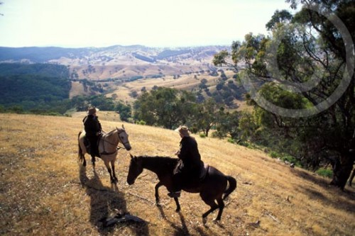 Photo of horseback riding in Victoria, Ausralia