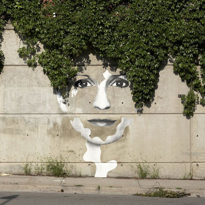 Photo of street art face and branches