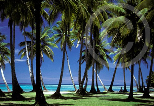 Photo of Truk Micronesia