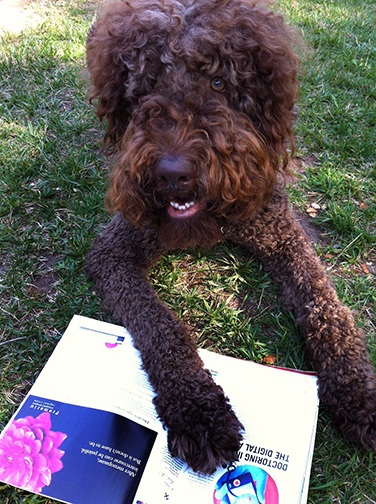 Photo of Doodles with his Family Circle magazine